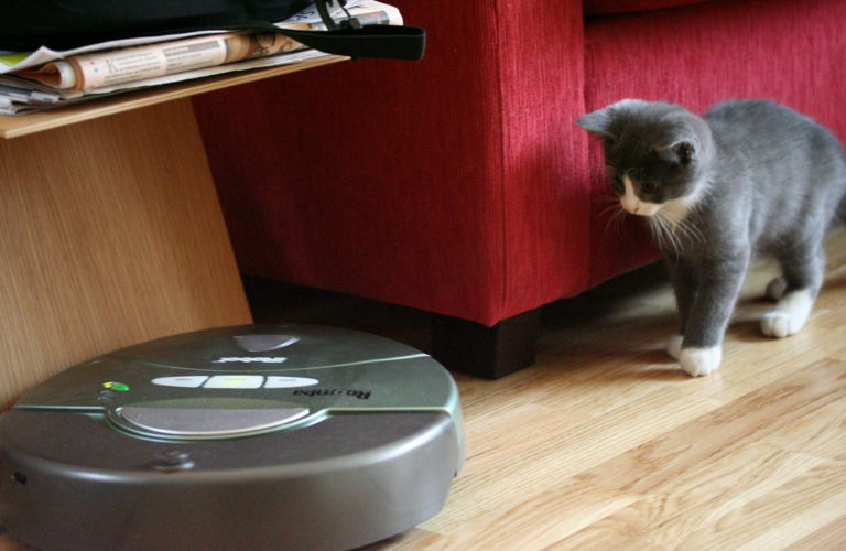 Problems And Solutions To Having A Cat And A Roomba